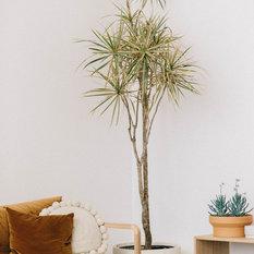 rita lou ceramics macetas y jardineras para interiores