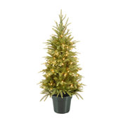 4' Weeping Spruce Wrapped Tree in Green Pot With 100-Light Clear
