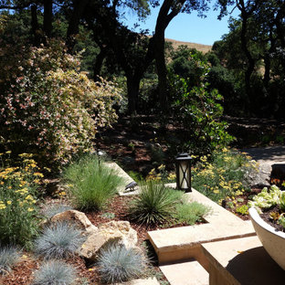 This is an example of a huge drought-tolerant and partial sun hillside stone retaining wall landscape in San Francisco for spring.
