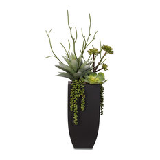 Botanical Succulent Variety With Tall Black Modern Metal Planter