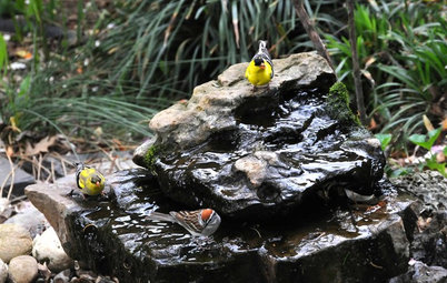 Bring In the Birds With a Homemade Bubble Rock