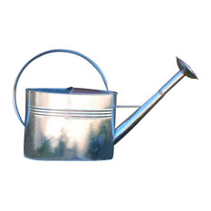 Galvanized Watering Can With Long Spout, 1 Gallon