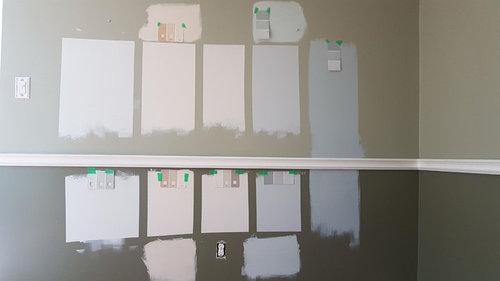 Help Deciding Paint Color