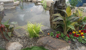 Pond Ideas
