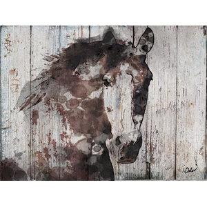 Wild Gorgeous Horse Canvas Print By Irena Orlov
