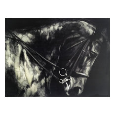 International Image & Canvas - Wall Decor Painting Horse in the Dark II - Paintings