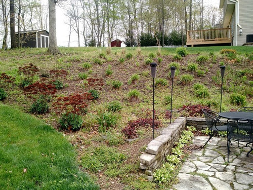 Need landscaping ideas for steep slope on Steep Sloping Garden Ideas id=57441