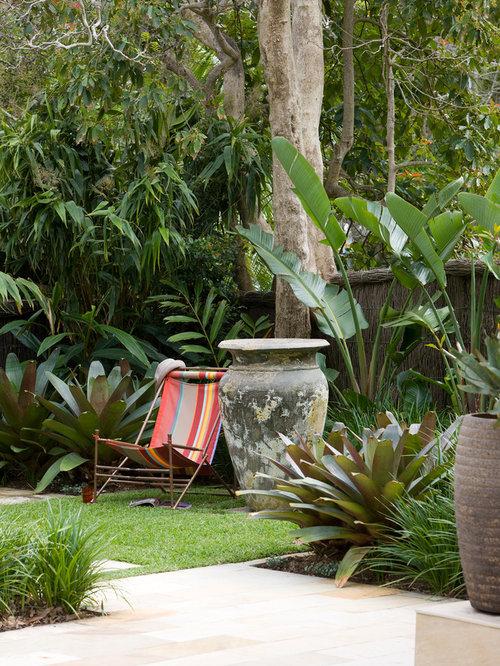 Avalon garden for 20 rose terrace paddington