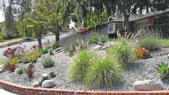 Drought Tolerant Landscape Design--Front Yard