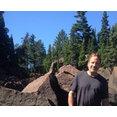 jeff timm landscape construction's profile photo