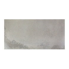 Oblivion Polished Porcelain Floor and Wall Tile, Light Gray, 16 in X 32 in
