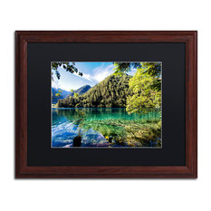 "Philippe Hugonnard 'Tiger Lake' Art, Wood Frame, Black Matte, 20""x16"""