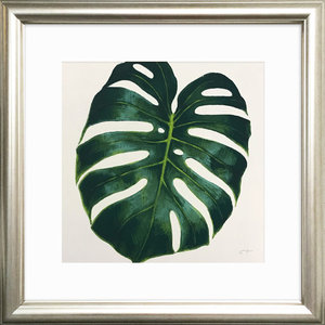 Evergreen Philodendron Framed Art Print, 31 x 31 cm