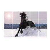 "Horse Picture Kitchen Bathroom Ceramic Tile Mural 1584, 30""x18"""