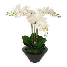 Artificial White Triple Stem Orchid in Black Round Zinc Vase