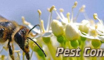 Marks Pest Control in Bondi