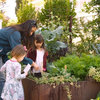 Houzz TV: Visit a Tiny California Garden With Lots to Taste
