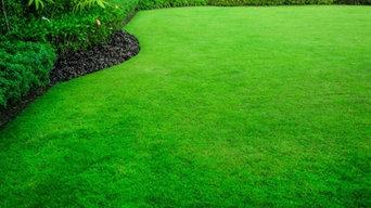 Lawn Fertilization and Nutrition