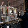 Little Free Libraries Take Manhattan
