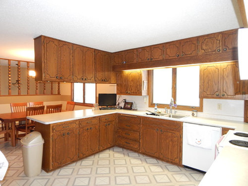 Need ideas for 1970\'s oak kitchen cabinet update
