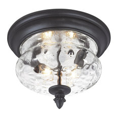 Minka Lavery Great Outdoor Ardmore 2-Light Flush Mount