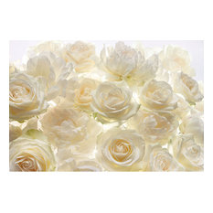 Brewster Home Fashions - Brewster Home Fashions  Ivory Rose Wall Mural - 145 in. - Wall Decals