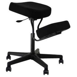 Traditional Office Chairs by Jobri, An Alex Orthopedic Compnay