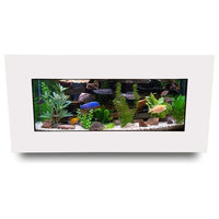 Aussie Aquariums 2.0 Wall Mounted Aquarium - Skyline - Matte White