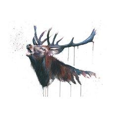 """Roar"" Printed Canvas by Sarah Stokes, 40x30 Cm"