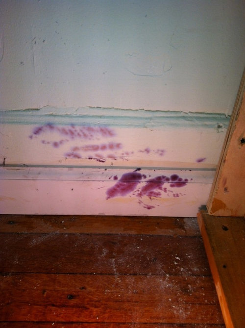 Unique Purple Mold On Wood How To Clean Mp24