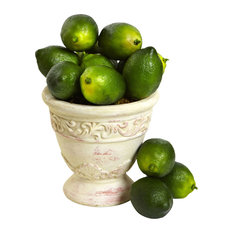 Faux Limes, Set of 12