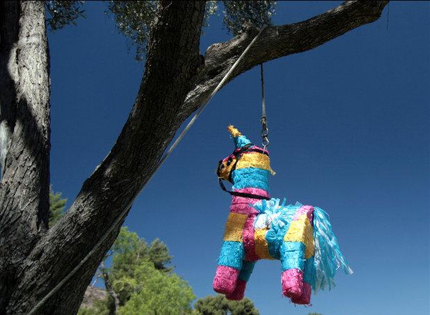 Viva Piñata
