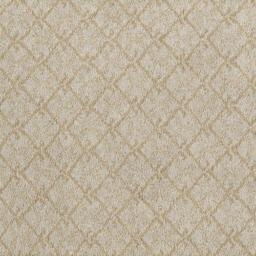 Carpet Soft Comfortable Colorful