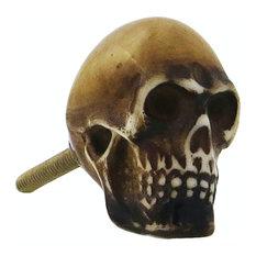 Skull Resin Brown Furniture Knob
