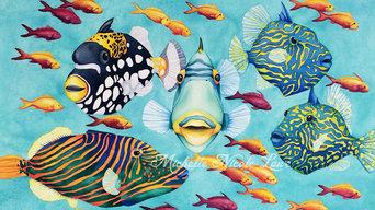 Marine Life Paintings