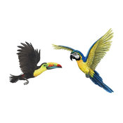 Tropical Birds Combo Pack Wall Decal