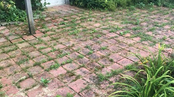 Small Clean Up around house and patio