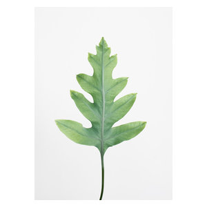 Shape in Green Wall Poster, 70x50 cm
