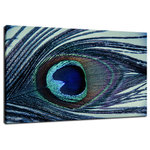 "Pi Photography Wall Art and Fine Art - ""Eye of the Peacock"" Nature Photography, Fine Art Canvas Wall Art Print, 20x30 - Eye of the Peacock, Abstract Photography Limited Edition Collectible Signed Fine Art Canvas Print"