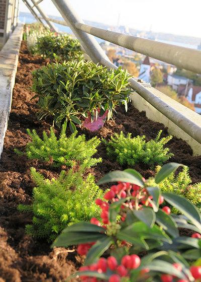 by Havekompagniet - en verden med planter