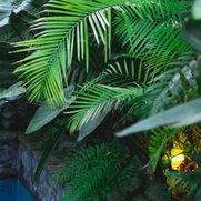 Feature Landscapes Ltd's photo