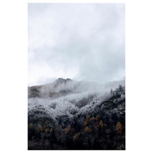"""""""Mountain Forest Mist"""" Poster, 50x70 cm"""