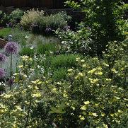 Chester Gardener's photo