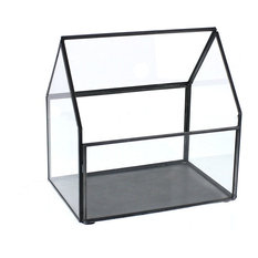 """7.25"""" Table Top Display Case Terrarium, Glass Green House Collectibles Plants"""
