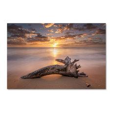 Pierre Leclerc 'Beach Tree Sunrise' Canvas Art, 19x12