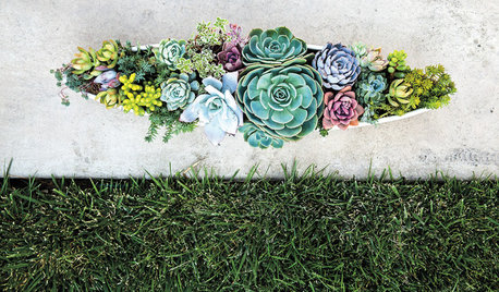 container gardens. Container Gardens 123 Stories