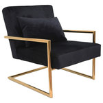 Sagebrook Home - Sagebrook Home Metal/Velveteen Arm Chair W/Pillow, Black/Gold - Sagebrook Home Metal/Velveteen Arm Chair W/Pillow, Black/Gold is the perfect home decor accessory to accent any corner, entryway or table in your living room, bedroom, and office.This Chair will be the perfect addition to your home decor and complement any of your existing furniture. Created from the highest quality, this Chair home accent will be a great centerpiece for your home! Sagebrook Home has been formed from a love of design, a commitment to service and a dedication to quality. They create and import fashion forward items in the most popular design styles. Backed with years of experience in the textile field, they are now providing a complete home decor story. The combination of wall decor, furniture, lighting and home accessories are all coordinated with textiles to provide a complete home look. Sagebrook Home is committed to providing the best home decor and accent pieces at value prices.