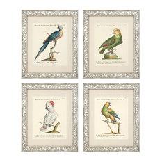 "Eichholtz ""Dunbar I"" Framed Prints, 4-Piece Set, 59x49x2 cm"