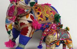 Cosmopolitan Animal, Elephant