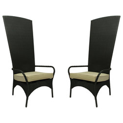 Tropical Outdoor Dining Chairs by Northlight Seasonal